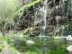 Dashbashi Canyon - Summer