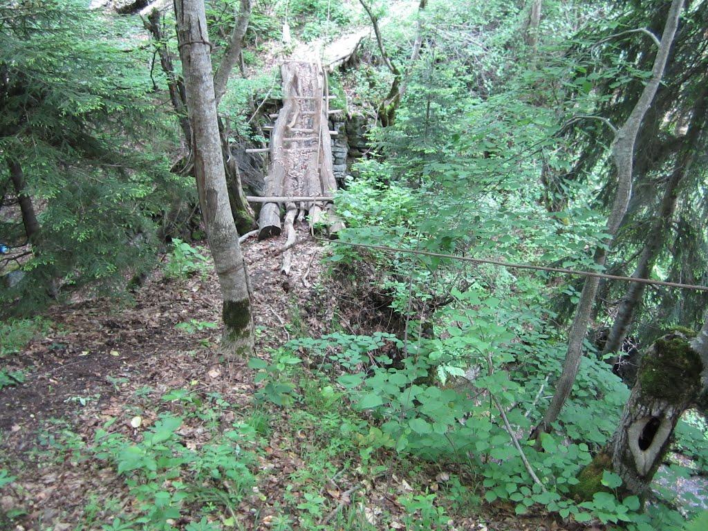 Bridge to Tavkavta - Into the Wild