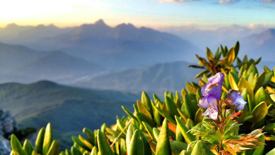 Shkmeri the land of flowers, simple & beautiful village of Racha